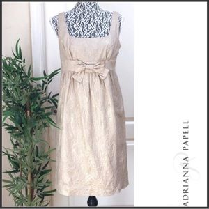 NWT Adrianna Papell Gold Embroidered Bow Dress